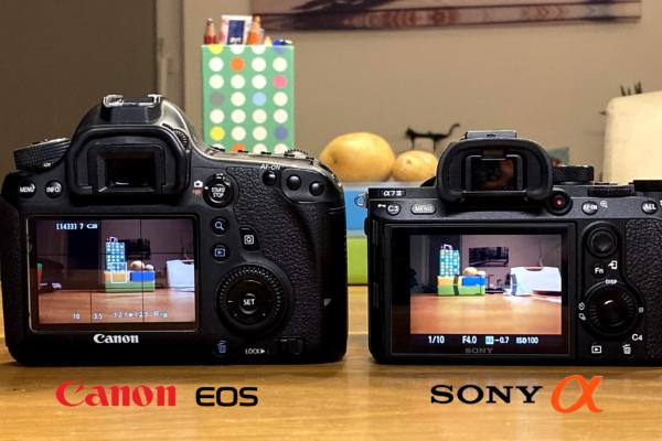 Canon vs Sony DSLR Camera Comparison #1 Color